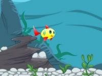 הדג המאושר ביותר